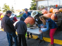 Weighing the pumpkins